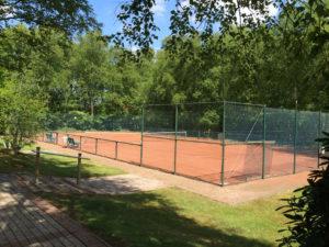 Read more about the article Schleifchen-Turnier der neuen Mitglieder